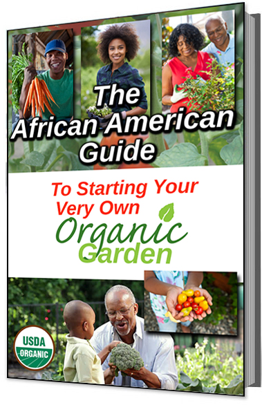 African American Guide to Starting Organic Garden